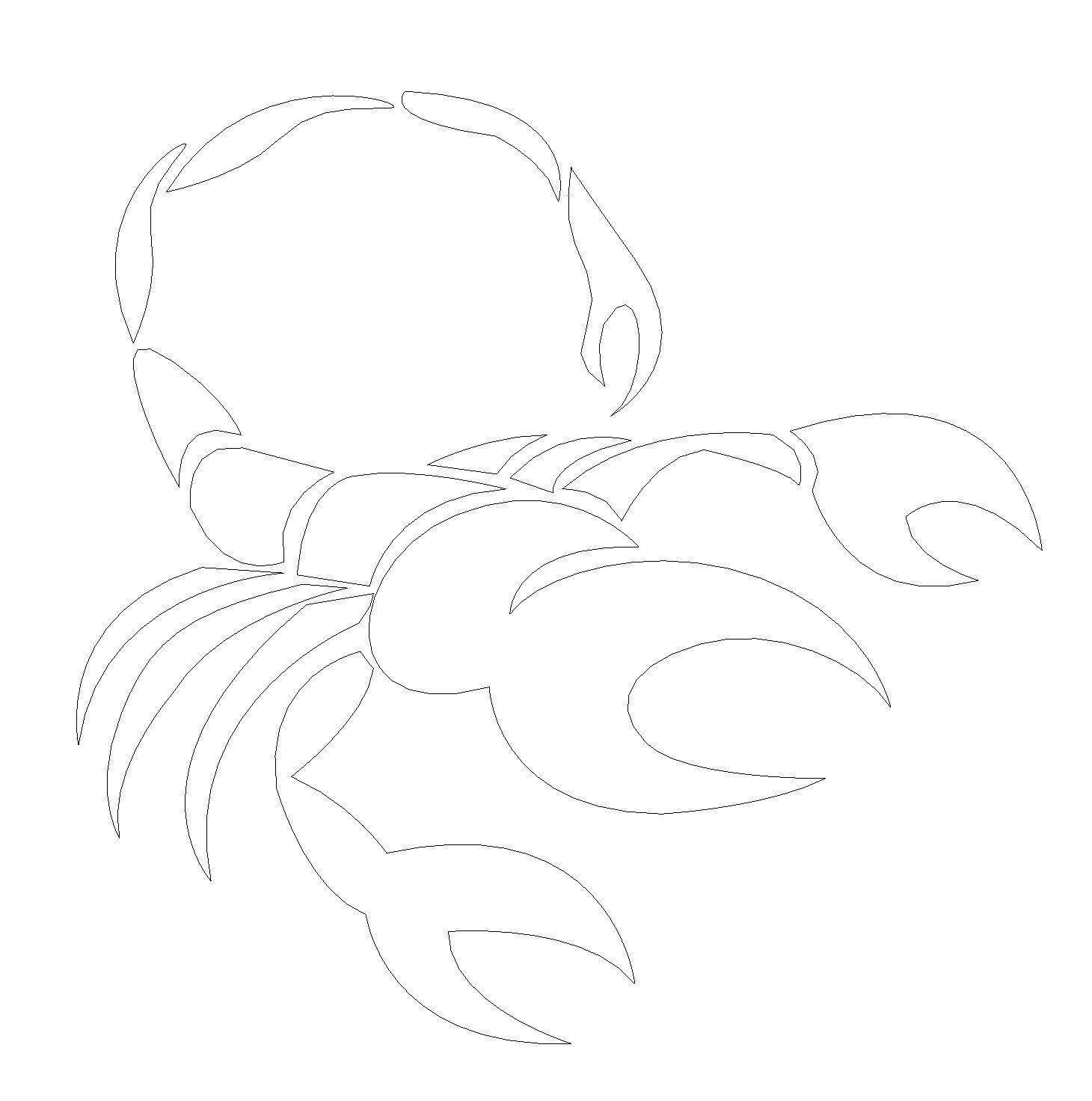 Skorpion Gravur